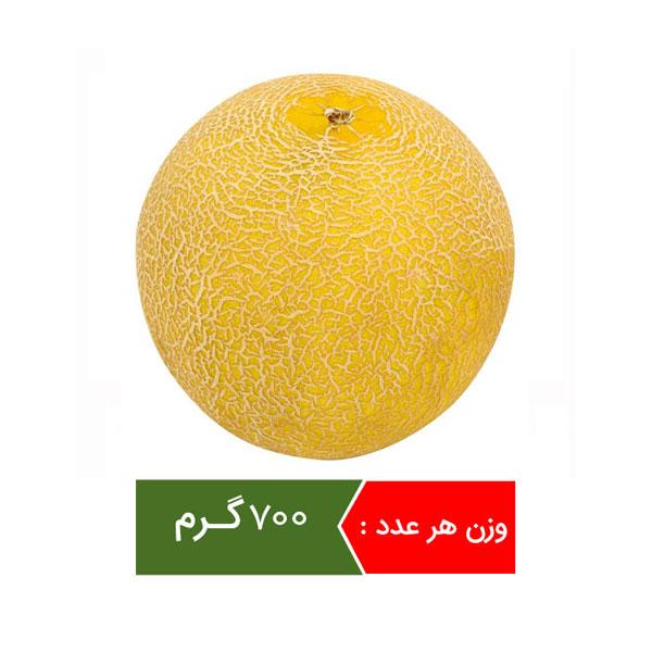 ملون میوه فصل