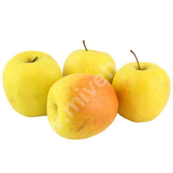 سیب زرد – میوه فصل