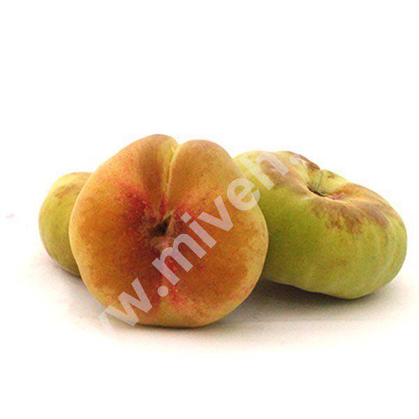 هلو انجیری – میوه فصل