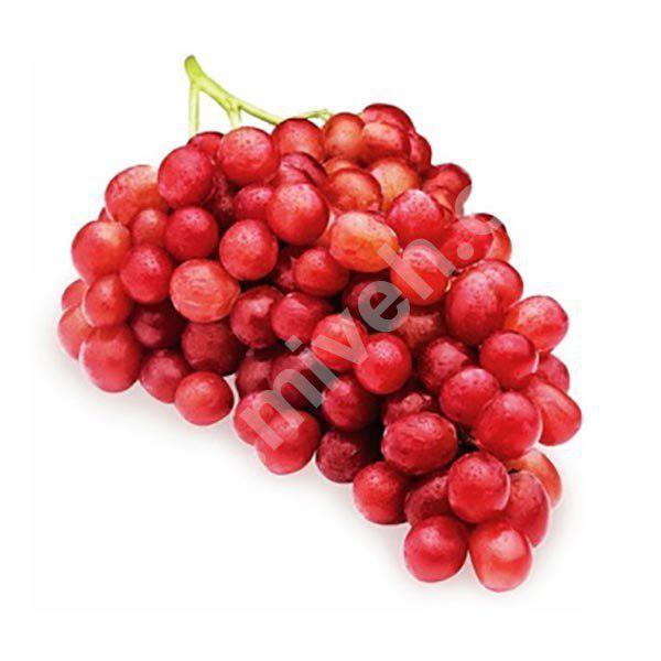 انگور قرمز – میوه فصل