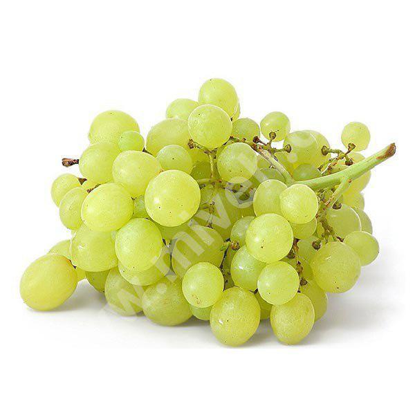 انگور سفید – میوه فصل