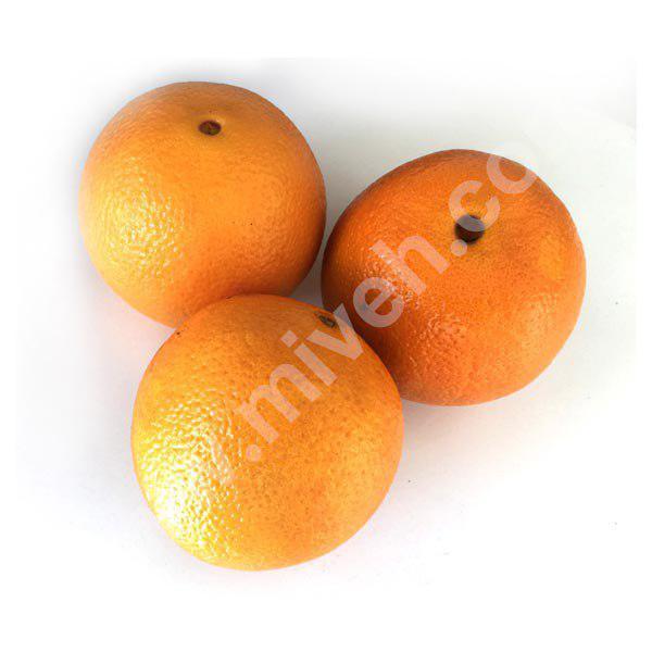 پرتقال نافی شمال – میوه فصل