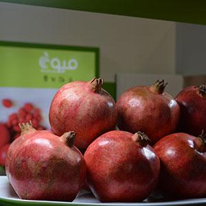 اولین نمایشگاه صنایع غذایی با حضور کشورهای اسلامی